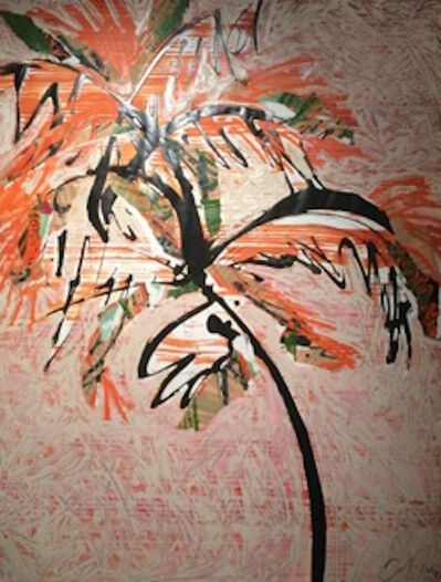 Catharine Warren, 'Palm at Sunset'