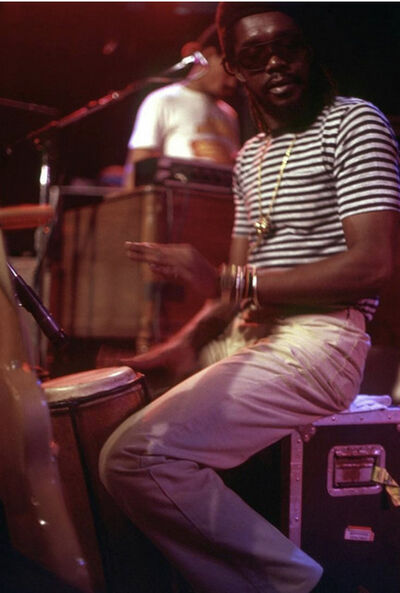 The Family Acid, 'Peter Tosh at the Roxy, Sunset Strip, August, 1981', 1981