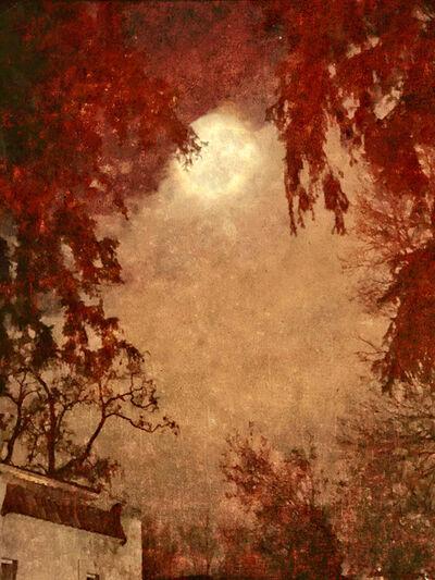 Wendi Schneider, 'An Evening with the Moon', 2018
