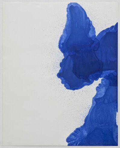 Cabrita, 'The liquid sky series #3', 2011
