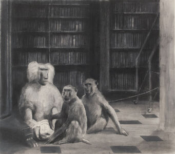 Miguel Branco, 'Untitled (The Library) #23', 2015
