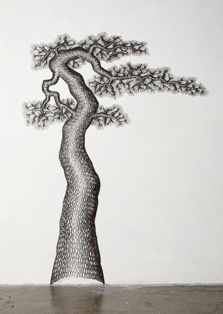Lee Gil Rae, 'Millennium Old Pine Tree 1', 2020