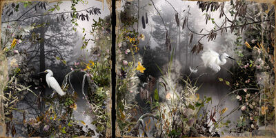 Ysabel Lemay, 'Les Naturalistes', 2012