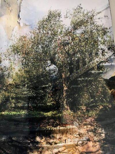 Marianne Catzaras, 'L'Escalier', 2018