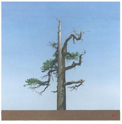 Greg Rose, 'Throop Tree [N34*21.178+w117*47.957', 2013