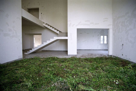 Andi Schmied, 'Grass House', 2014