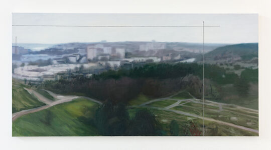 Tommy Hilding, 'Utsnitt / Cropped Image', 2017