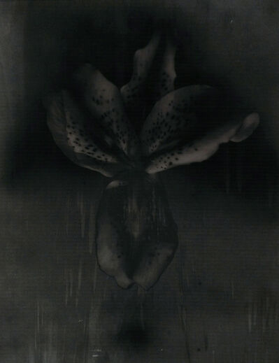 Simone Bergantini, 'Untitled', 2008