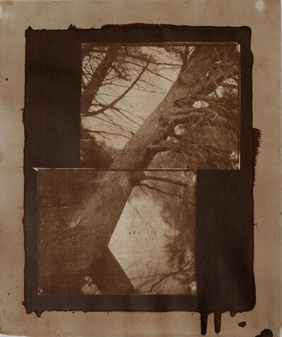 """Koichiro Kurita, '""""Constant View"""" Montville, ME', 2011"""
