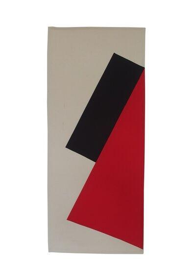 "Dolores Zinny & Juan Maidagan, 'Brand"" Study # 2', 2014"
