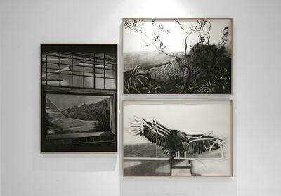 Gabriela Bettini, 'Lighting/The Hawaii Diorama/Bald Eagle', 2020