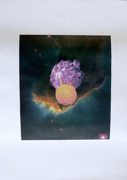 Yuko Shiraishi, 'Orion and Apoptosis', 2013