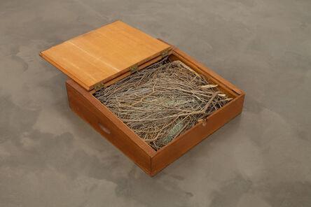 Robert Kinmont, 'Sit on the floor', 1971