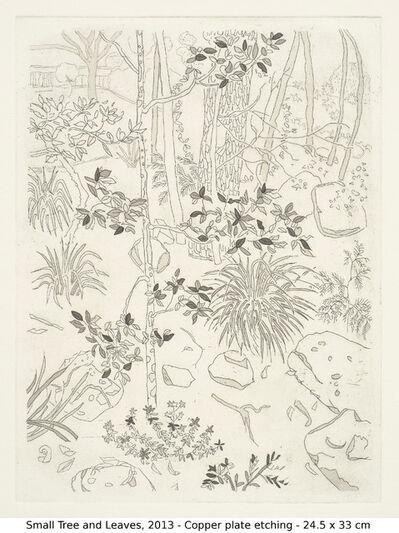 Jacqueline Balassa, 'Small Tree and Leaves', 2013