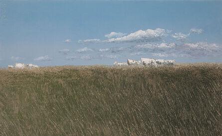 Benoît Trimborn, 'Vaches en été Stratocumulus'