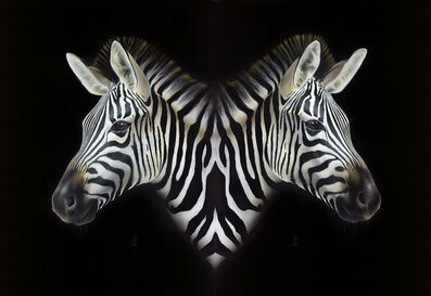 Peter Maier, 'Yikes Stripes', 2015
