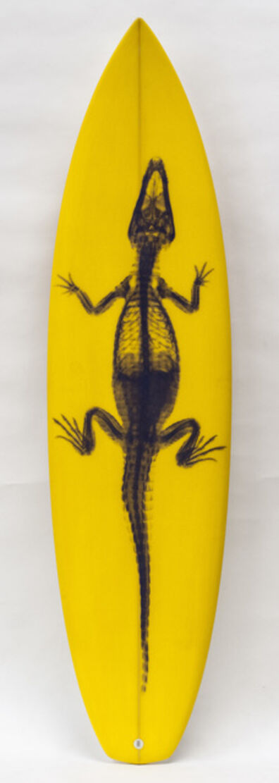 Steve Miller, 'Surfboard yellow'