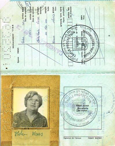 Soheila Sokhanvari, 'Israeli Passport', 2010