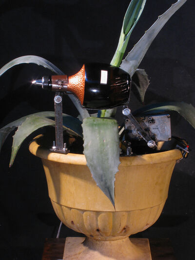 Kal Spelletich, 'Tequila Agave Pouring Machine', 2015
