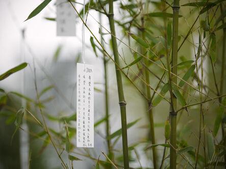 Yoko Ono, ''Wish Tree Garden'', 2015