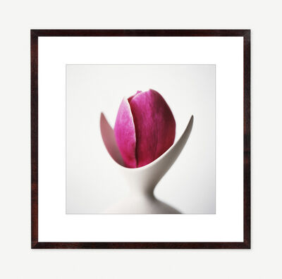 Vivienne Foley, 'Magnolia in Ivory Forked Vase', 2000
