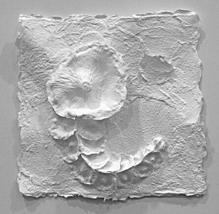 Rimer Cardillo, 'White Botanical 2', 2015