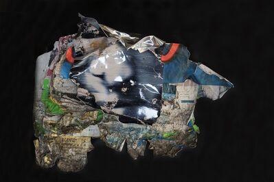 Joachim Romain, 'A l'Origine Serie- Untitled', 2012