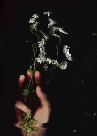 Paloma Mayorga, 'Un tesito (A bit of tea) 9', 2020