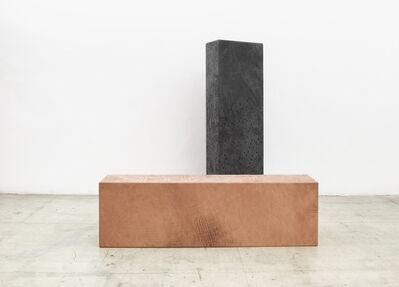 Anneliese Schrenk, 'Körper', 2015