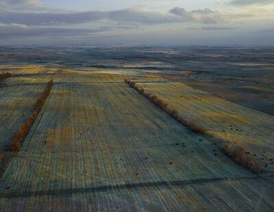 Andrew Moore, 'Dusky Fields, McKenzie County, North Dakota', 2013