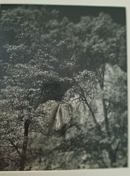 Ansel Adams, 'Spring, Yosemite', ca. 1948