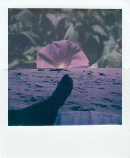 Stuart Sandford, 'Polaroid Collage XLIX', 2020