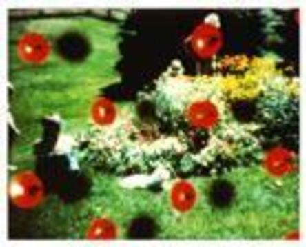 Steel Stillman, 'Red Dots', 1978