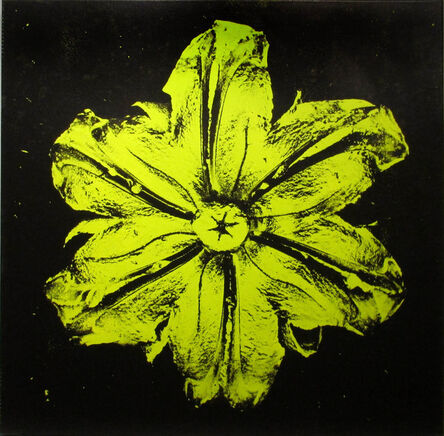Rubem Robierb, 'Power Flower N-3 (Pistachio on Black)', 2016