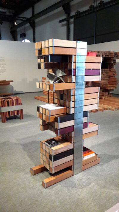 Mameluca Studio, 'Symbiotic Shelf', 2016