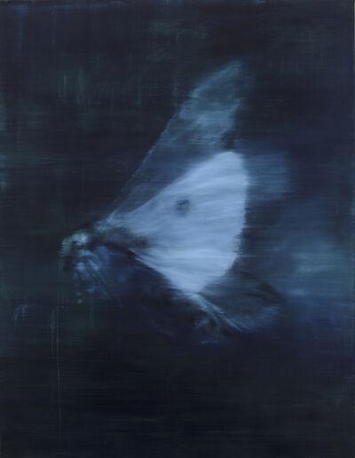 Katherine Spindler, 'Moth I', 2017