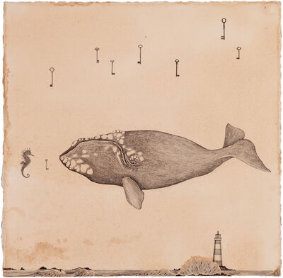Andrea Collesano, 'La balena e il cavalluccio', 2014