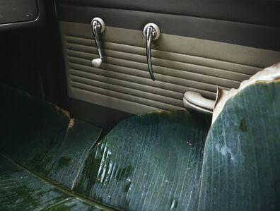 Lothar Baumgarten, 'VW do Brazil', 1973 -1974