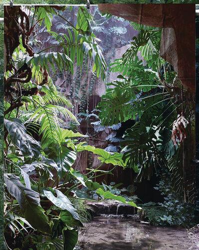 Noemie Goudal, 'Les Mécaniques, Tropiques V', 2020