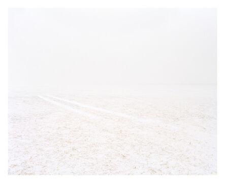 Joe Johnson, 'Tracks in Field', 2010
