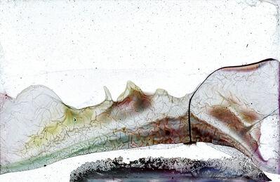 Wolfgang Ganter, 'untitled (cerebrum film)', 2017