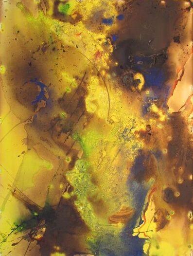 Peter Kephart, 'Abstract Natural #2', 2014