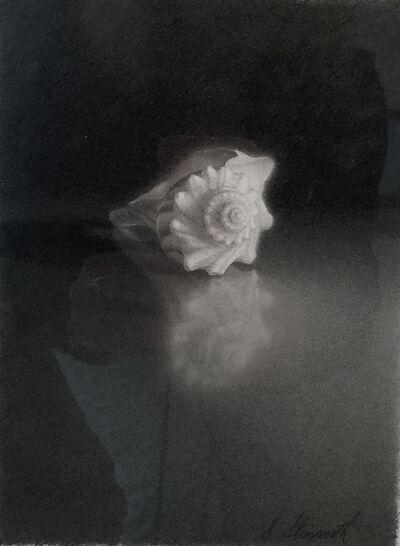 Skip Steinworth, 'Shell', 2004
