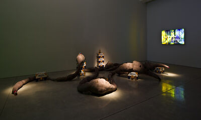 Mike Kelley, 'Mexican Blind Cave Worm', 2010