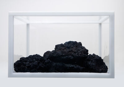 He Xiangyu, 'COCA-COLA PROJECT - EXTRACTION ', 2010