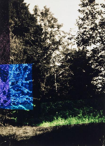 Frank Mädler, 'Garten mit Blau und Lila', 2019