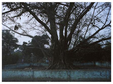 Shiraz Bayjoo, 'Untitled', 2020