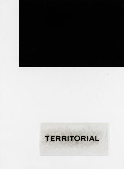 Vincenzo Agnetti, 'Territorial', 1971