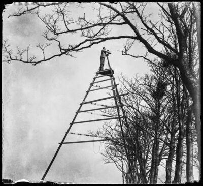 Jan Pieter Strijbos, 'The Summit of Bird Photography, Sloten', 1933