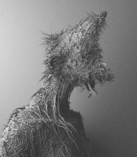 Can Pekdemir, 'Fur IV, Variation II', 2015